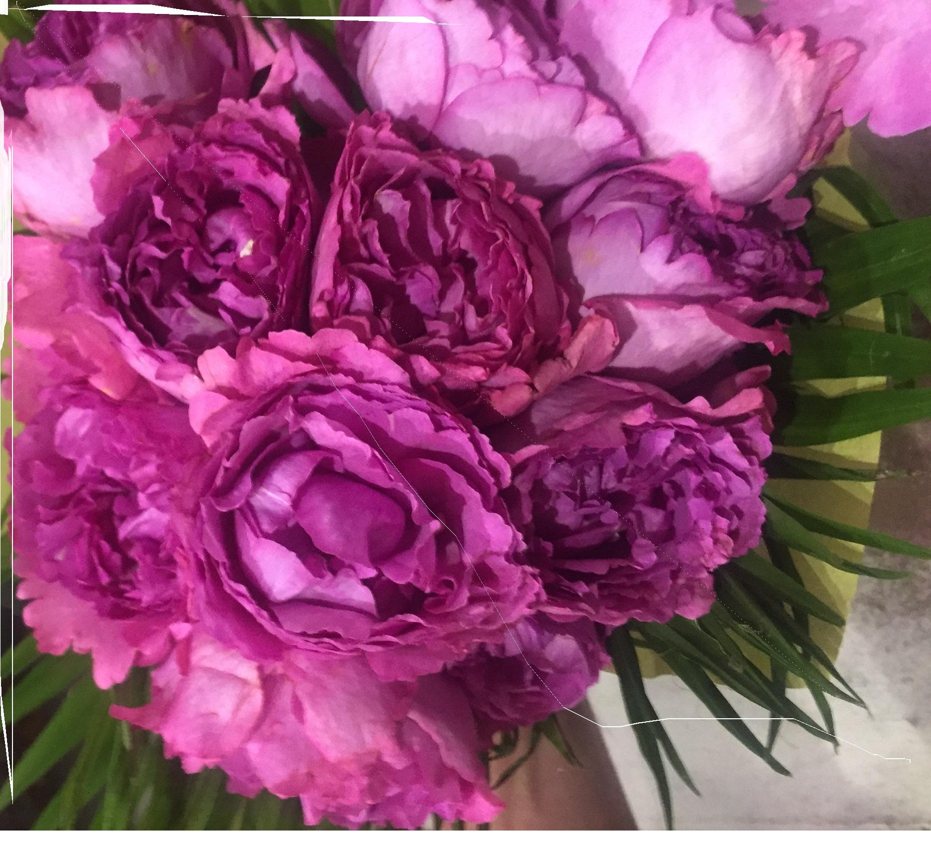 Bouquet de Roses Piaget