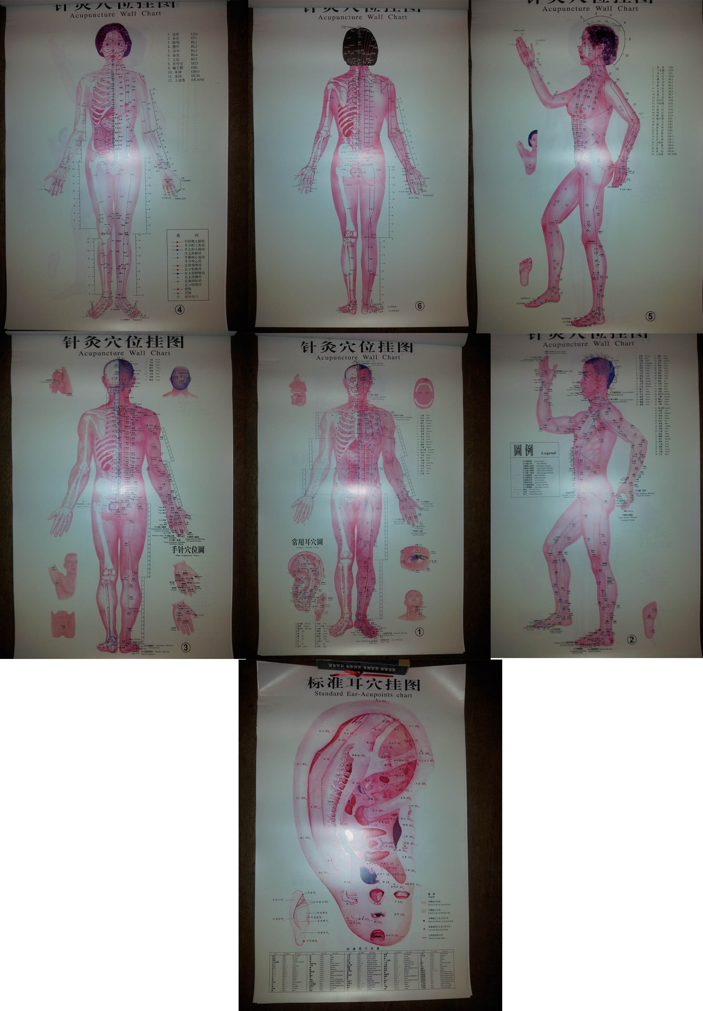7 posters acupuncture mural en Anglais & Chinois