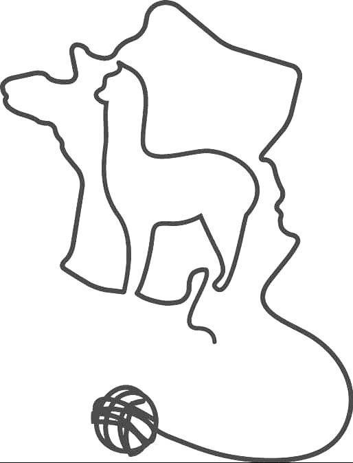 Handwoven 100% Baby Alpaca Extra Wide Scarf Full Spectrum
