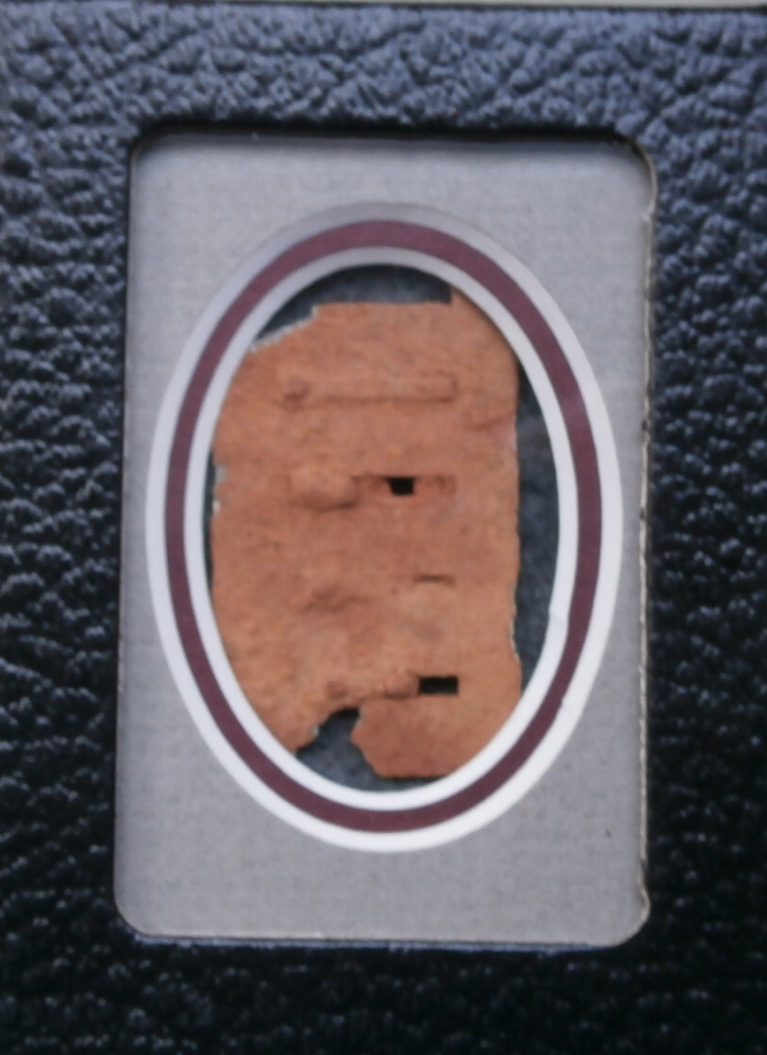 Soldiers Harmonica reed